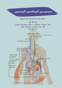 سیستم رنین آنژیوتانسین آلدوسترون