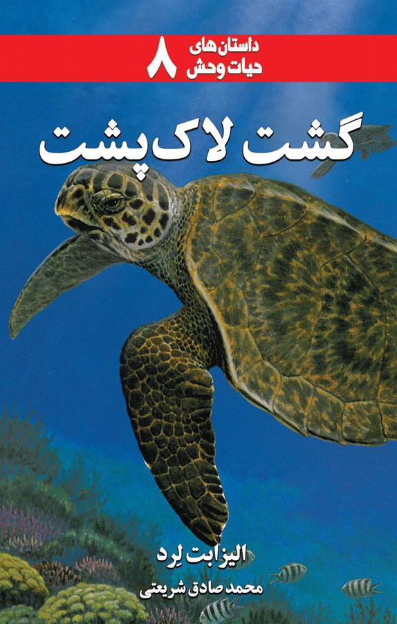 گشت لاکپشت