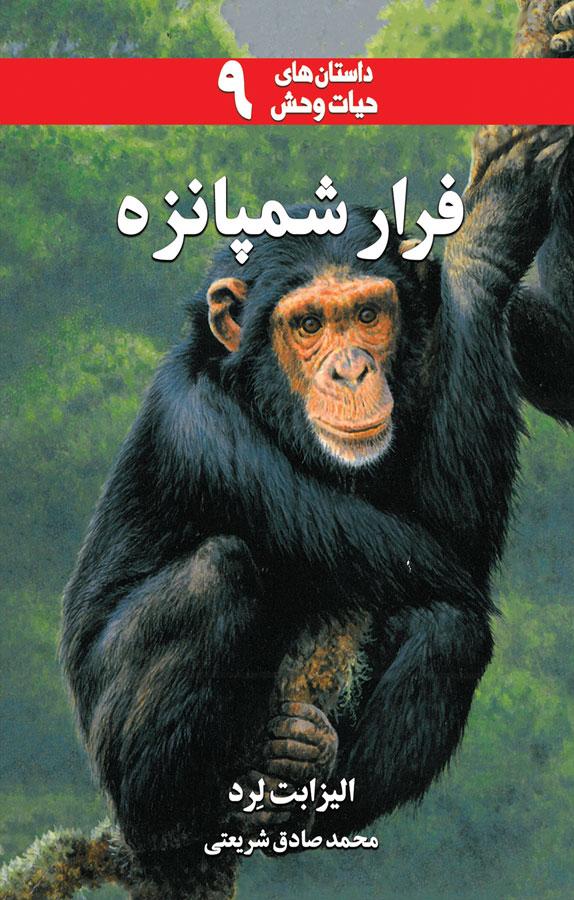 فرار شمپانزه