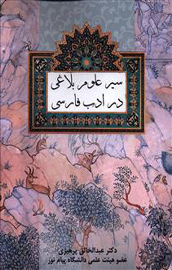 سیر علوم بلاغی در ادب فارسی