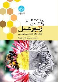 ریختشناسی و تشریح زنبورعسل