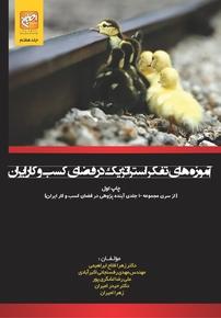 کتاب آموزههای تفکر استراتژیک در فضای کسبوکار ایران - جلد ۷