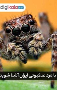 پادکست با مرد عنکبوتی ایران آشنا شوید
