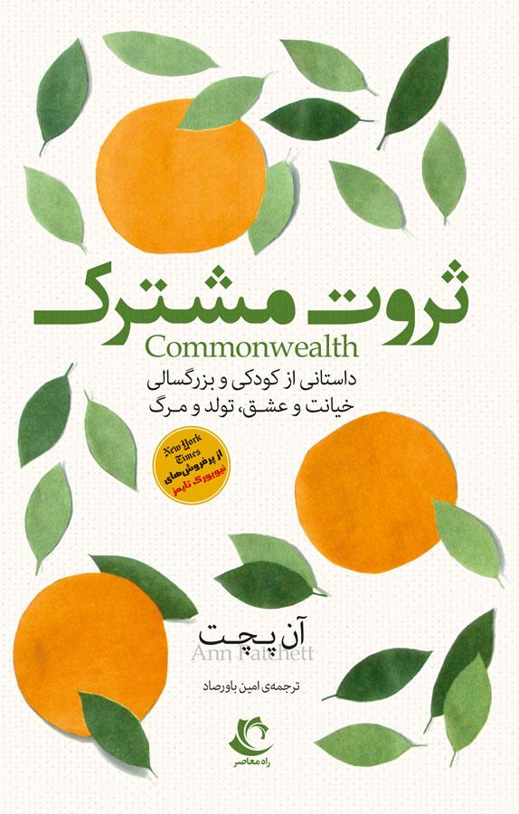 ثروت مشترک: داستانی از کودکی و بزرگ سالی، خیانت و عشق، تولد و مرگ