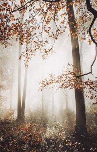 پادکست رادیو میکس بار - پاییز - قسمت هفتم