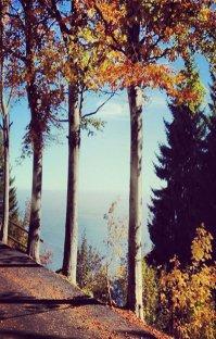 پادکست: رادیو میکس بار - پاییز - قسمت هشتم (فصل هفدهم)